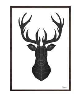 Black Deer – Photomood