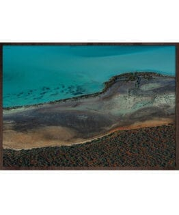 Shark Bay01 – photomood